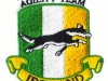 agility-team-ireland-digitizing-sewn-out